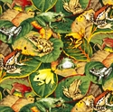 Picture of Colorful Frogs on Green Leaves Cotton Fabric