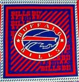 Picture of NFL Football Buffalo Bills Logo 18x20 Cotton Fabric Pillow Panel