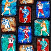 Picture for category Sports Large Fabric Panels