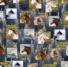 Picture of Running Wild Blue Gray Horse Patch Horse Head Squares Cotton Fabric