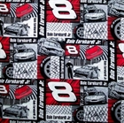 Picture of NASCAR Racing Dale Earnhardt Jr No. 8 Squares Cotton Fabric