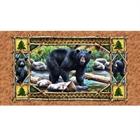 Picture of Bear Country Mother Bear with Cubs 24x44 Large Cotton Fabric Panel