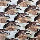 Picture of Nostalgic Hunt Canadian Geese in Flight Cotton Fabric