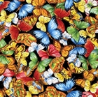 Picture of Anything Goes Colorful Butterflies on Black Cotton Fabric