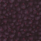 Picture of Blackberry Berries RJR Farmers Market 2008 Cotton Fabric