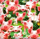 Picture of Pigs Pig Piglets and Butterflies on Fence Cotton Fabric