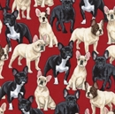 Picture of French Bulldogs Bull Dog Puppies on Red Cotton Fabric