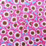 Picture of Botanical Flowers Pink Cineraria on Blue Cotton Fabric