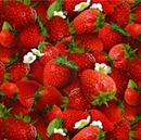 Picture of Food Festival Fresh Ripe Strawberries and Flowers Cotton Fabric