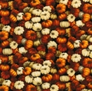 Picture of Autumn Romance Small Fall Pumpkins and Gourds Cotton Fabric