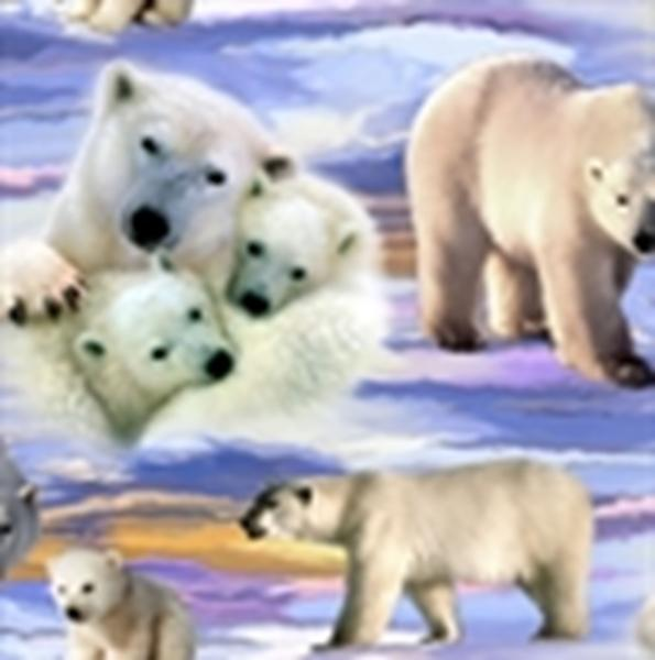 Picture for category Animal Flannel Fabrics