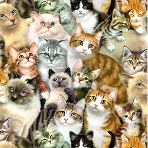 Petpourri Many Breeds of Fluffy Kittens Cotton Fabric