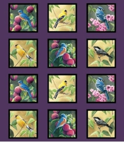 Picture of Fruit of the Vine Songbirds in Squares 24x22 Cotton Fabric