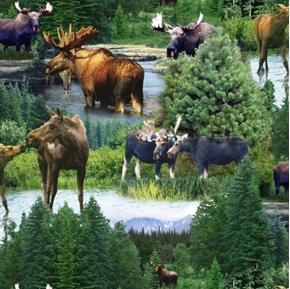 North American Wildlife Moose in the Wild Cotton Fabric