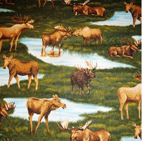 The Last Frontier Moose in Grass and Ponds Cotton Fabric