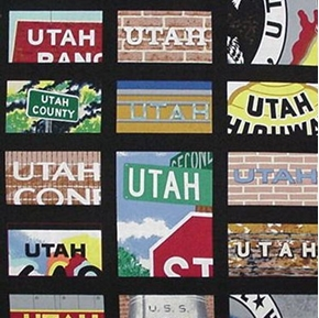 Travel The States Utah Squares Cotton Fabric