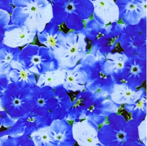 State Flowers Alaska Forget Me Nots Cotton Fabric