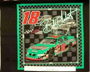 Nascar Racing 18 Bobby Labonte Cotton Fabric Pillow Panel