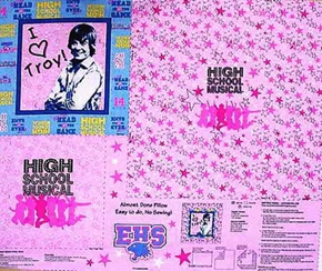 Disney High School Musical Troy Pillow Cotton Fabric Craft Panel