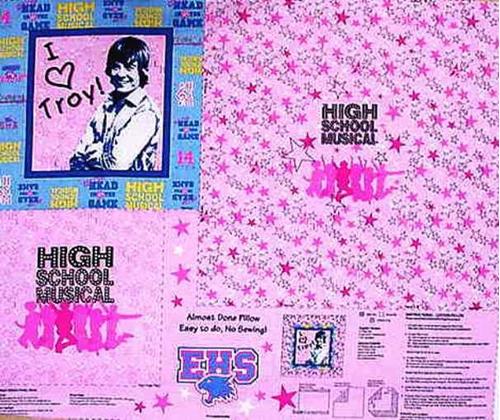 Disney High School Musical Troy Pillow Cotton Fabric Craft Panel