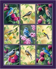 Fruit Of The Vine Songbirds And Plums In Squares Large Fabric Panel