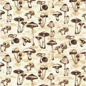 Picture of Nature Outdoors Species of Exotic Mushrooms Cream Cotton Fabric