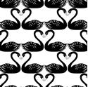 Picture for manufacturer Studio E Fabrics