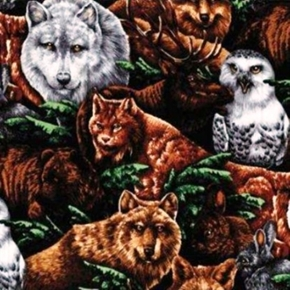 Wood Haven Woodland Animals In The Wild Owls Wolves Cotton Fabric