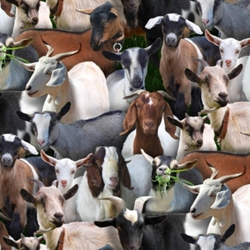 Farm Animals Goats Eating Grass Goat Collage Cotton Fabric
