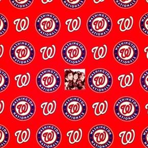 MLB Baseball Washington Nationals Logos Red 18x29 Cotton Fabric