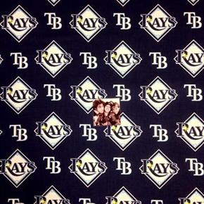 MLB Baseball Tampa Bay Rays Logos Navy Blue 18x29 Cotton Fabric