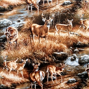 Unknown Intruder Northwoods Scenic Deer in the Creek Cotton Fabric