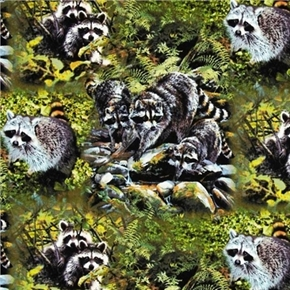 Wild Wings Masked Bandits Raccoons Cotton Fabric
