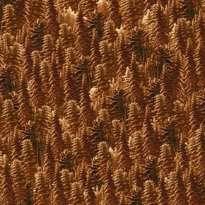 Silent Flight Brown Pine Trees Cotton Fabric