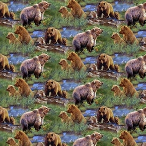 Wild Wings Jagger Rock Brown Bears Grizzly Bear Scenic Cotton Fabric