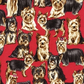 Yorkie Dog Puppy Toss Yorkies On Red Cotton Fabric