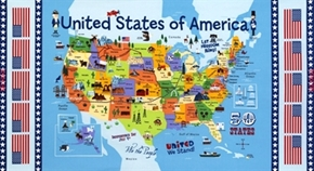 Picture of USA Map Lined with Flags 24x44 Large Cotton Fabric Panel