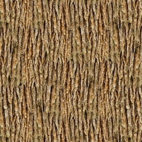 Landscape Medley Brown Tree Bark Cotton Fabric