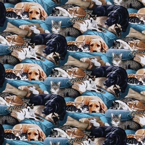 Wild Wings Slumber Party Sleeping Cat Dog Kitten Puppy Cotton Fabric