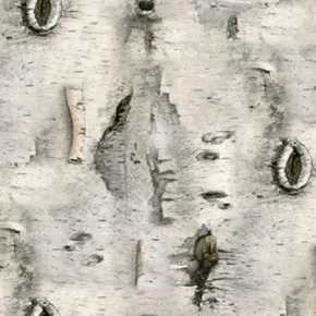 Landscape Medley White Birch Tree Bark Cotton Fabric