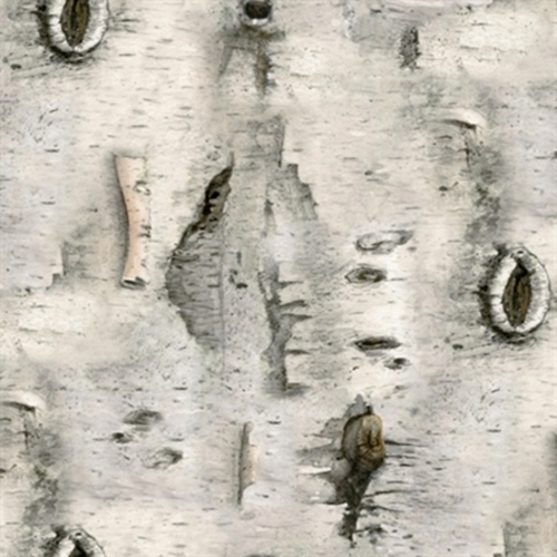 Landscape Medley White Birch Tree Bark Cotton Fabric