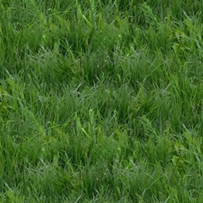 Landscape Medley Green Grass Lawn Turf Cotton Fabric