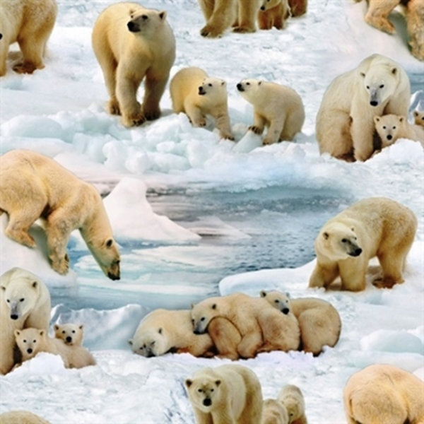 Picture for category Arctic Animal Fabrics