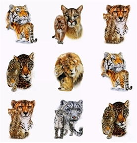 Big Cats Lion Tiger Puma Jaguar Mother Cub 24X44 Cotton Fabric Panel