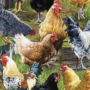 Wild Wings Hen Pecked Chickens And Roosters On The Farm Cotton Fabric