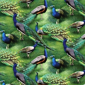 Picture of Wild Wings Pageant of Color Peacocks in the Grass Cotton Fabric