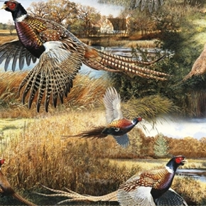 Wild Wings Feathered Run Pheasants Pheasant Families Cotton Fabric