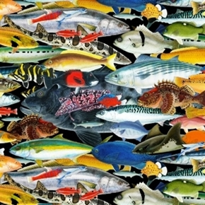 Catalina Island Tropical Fish Packed Black Cotton Fabric