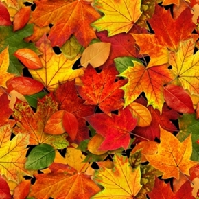Picture of Landscape Medley Autumn Leaves Fall Colors Cotton Fabric