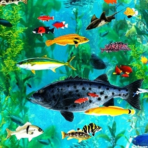 Catalina Island Varieties Of Tropical Fish Swimming Underwater Cotton Fabric
